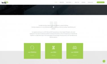 HEPTO Webdesign Website Webshop bridgX